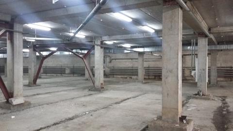 Продам помещения свободного назначения общей площадью 307 кв.м. - Фото 5