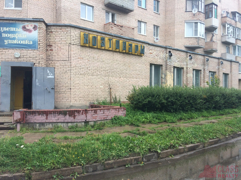 Сдам торг. помещение. Павлово пгт, Советская ул. - Фото 1