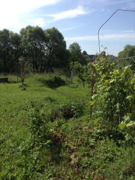 Продажа гектара земли в живописном месте