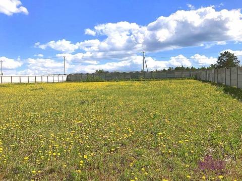 Продается земельный участок 25 соток, Клинский р-н, д.Милухино - Фото 1