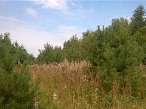 Земельный участок 13 соток для строительства загородного дома или . - Фото 1