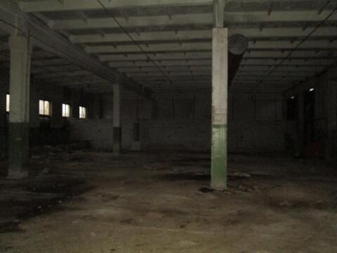 Помещение под гараж, склад, производство - Фото 1