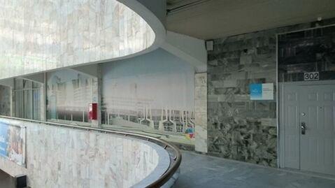 Сдам офисное помещение 216 кв.м, м. Василеостровская - Фото 4