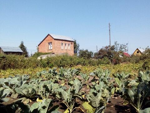 Продам пустой участок в СНТ Тихие зори, ухожен, Новосибирск Краснообск - Фото 4