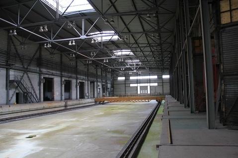 Продам производственный корпус 29 000 кв.м. - Фото 4