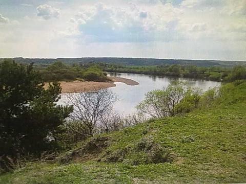 Продается участок 12 сот. в соснах на берегу Угрыв 18 км от Калуги! - Фото 1
