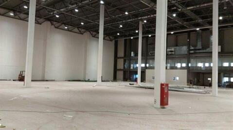 Сдам складское помещение 3000 кв.м, м. Купчино - Фото 2