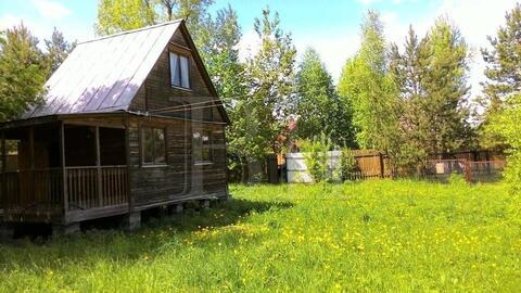 Продам дом 30 кв. м с участком 14 соток, д. Сафонтьево, 45 км от МКАД . - Фото 4