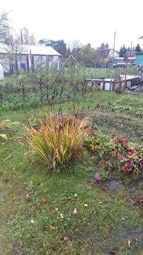 Продажа садового дома массив Рубеж - Фото 4