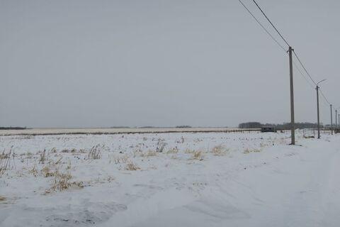 Продажа участка, Большие Акияры, Тюменский район - Фото 5