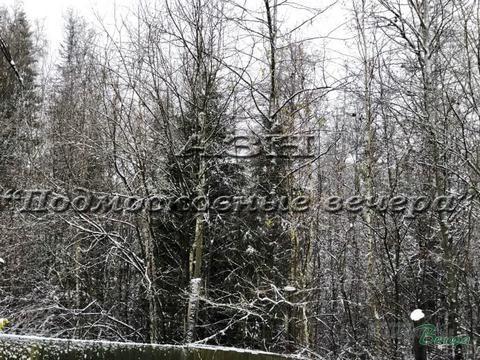 Минское ш. 33 км от МКАД, Сивково, Участок 24 сот. - Фото 3