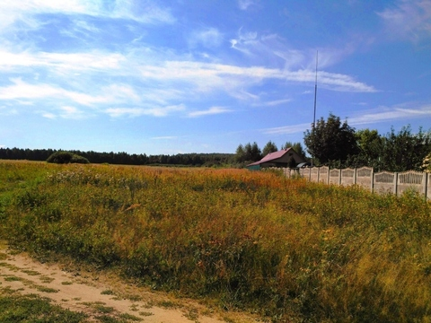 Судогодский р-он, Конюшино д, земля на продажу - Фото 1