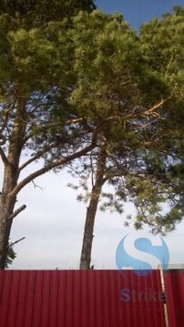 Продажа участка, Созоново, Тюменский район - Фото 1