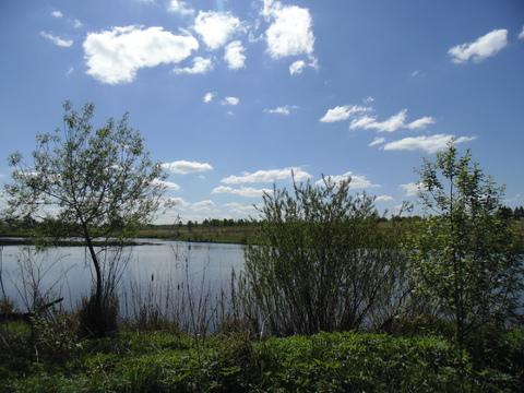 Участок Алексеевка д, Чеховский район 57 км от МКАД. - Фото 4