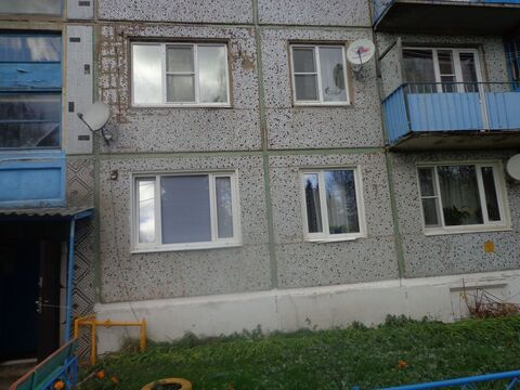 3 комнатная квартира пл. 61.9 в д. Богословское Ясногорского района . - Фото 1