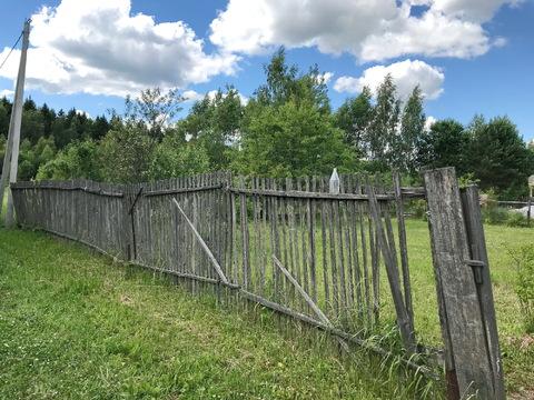 Продам шикарный ровный участок у леса на солнечной стороне. - Фото 5