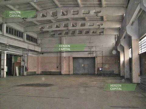 Аренда производственного помещения, Балашиха, Балашиха г. о, Балашиха - Фото 3