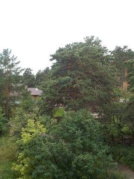 Продажа участка, Кудряшовский, Новосибирский район - Фото 5
