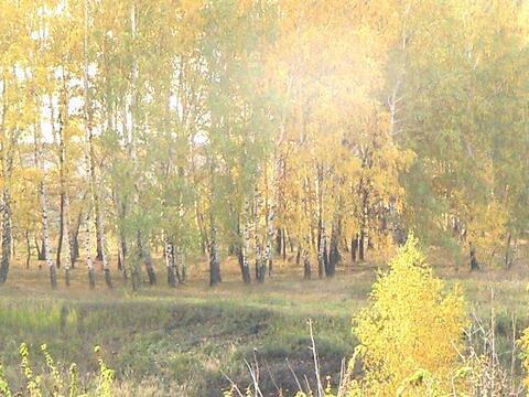 Продам участок на берегу озера в Жуково - Фото 5