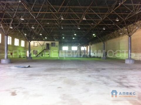 Продажа помещения пл. 2795 м2 под склад, производство, , офис и склад, . - Фото 2