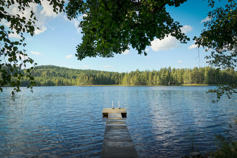 Объявление №1732686: Продажа виллы. Финляндия