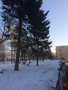 Продам однокомнатную (1-комн.) квартиру, Флотская ул, 18, Новосибир. - Фото 3