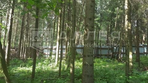 Лесной участок 15 сот. - Фото 5