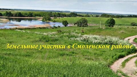 Участок в Рославльском направлении, рассрочка приветствуется! - Фото 1