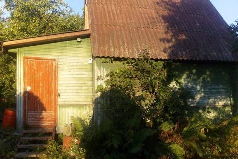 Дача в СНТ Южный-2 - Фото 3