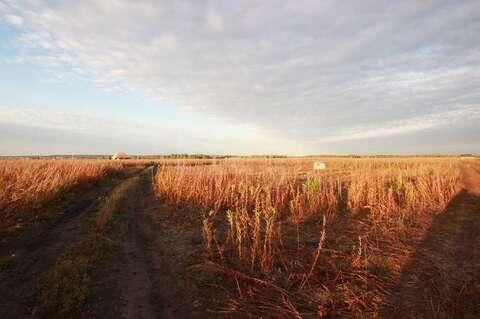Земельный участок в южном - Фото 2