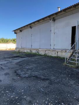 Аренда 230 м2 под склад в Раменском - Фото 3