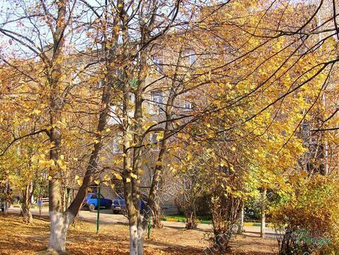 Московская область, Рузский городской округ, рабочий поселок Тучково, . - Фото 1