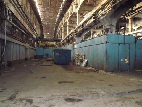 Сдам производственное помещение 1200 кв.м, м. Купчино - Фото 1