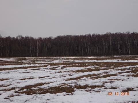 Участок 630 соток, в 5 км. от города Таруса - Фото 1