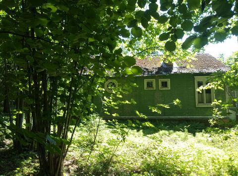 """ДПК """"Назарьево"""" лесной участок 35 соток - Фото 5"""