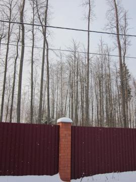 Участок с лесными деревьями, огорожен, Минское шоссе, Зеленая роща - Фото 2