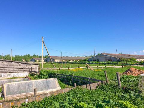 Продаётся сельскохозяйственный имущественный комплекс - Фото 4