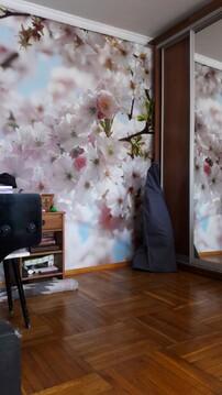 1-комнатная квартира в Измайлово - Фото 2