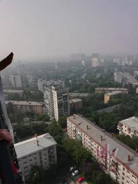 Объявление №49966687: Квартира 2 комн. Екатеринбург, ул. Гурзуфская, 11,