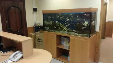 Сдается офис 120.4 кв. м, Мытищи - Фото 3