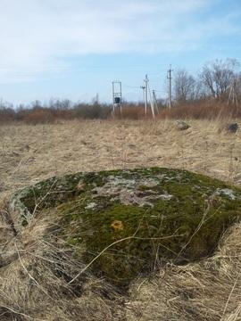 Гдовский р-н, д. Хитово: Земельный участок - Фото 3
