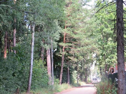 Участок в Малаховка-парке - Фото 2