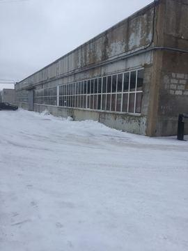 Сдается теплое производственно-складское помещение 1000м2, д.Кипень - Фото 4