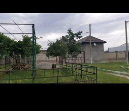 Продажа дома, Шалушка, Чегемский район, Улица Шокарова - Фото 2