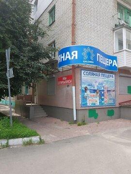 Аренда псн, Брянск, Ул. Октябрьская - Фото 1