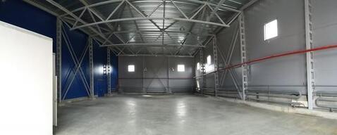 Сдается склад 464.5 м2 в Мурино - Фото 5