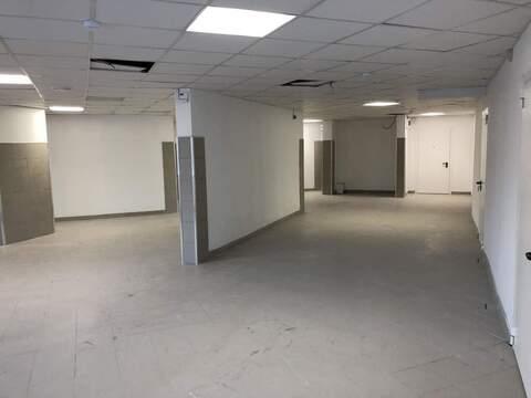 Торговое помещение в аренду 253 м2, Раменское - Фото 4