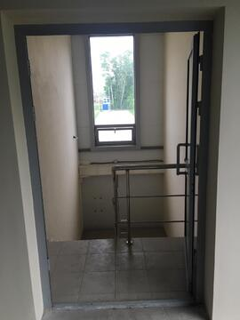 Помещение в аренду, свободного назначения, 646 м кв в Ново-Молоково - Фото 4