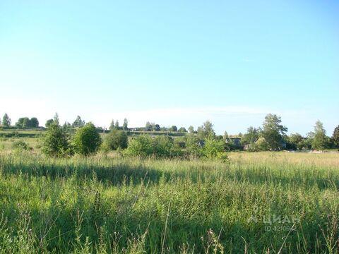 Продажа дома, Палкинский район - Фото 2