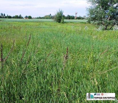Участок 1 га в г. Богородск Нижегородской области